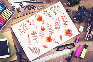 Flowers Set, Hand Drawn Elements