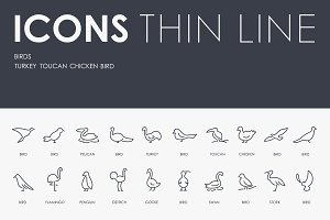 Birds thinline icons