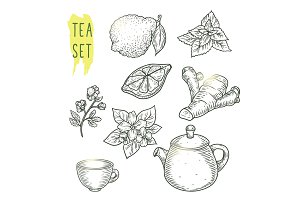 Sketch of tea elements include teapot, cup, mint, chamomile, jasmine, lemon slice, ginger and bergamot.