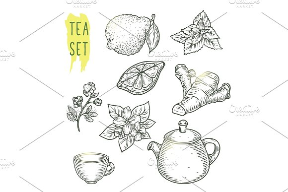Sketch Of Tea Elements Include Teapot Cup Mint Chamomile Jasmine Lemon Slice Ginger And Bergamot