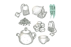 Sketch of tea elements include teapot, teabags, cup, sugar, bergamot and dry leaves.