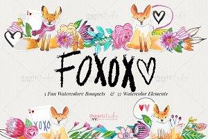 FOXOXO
