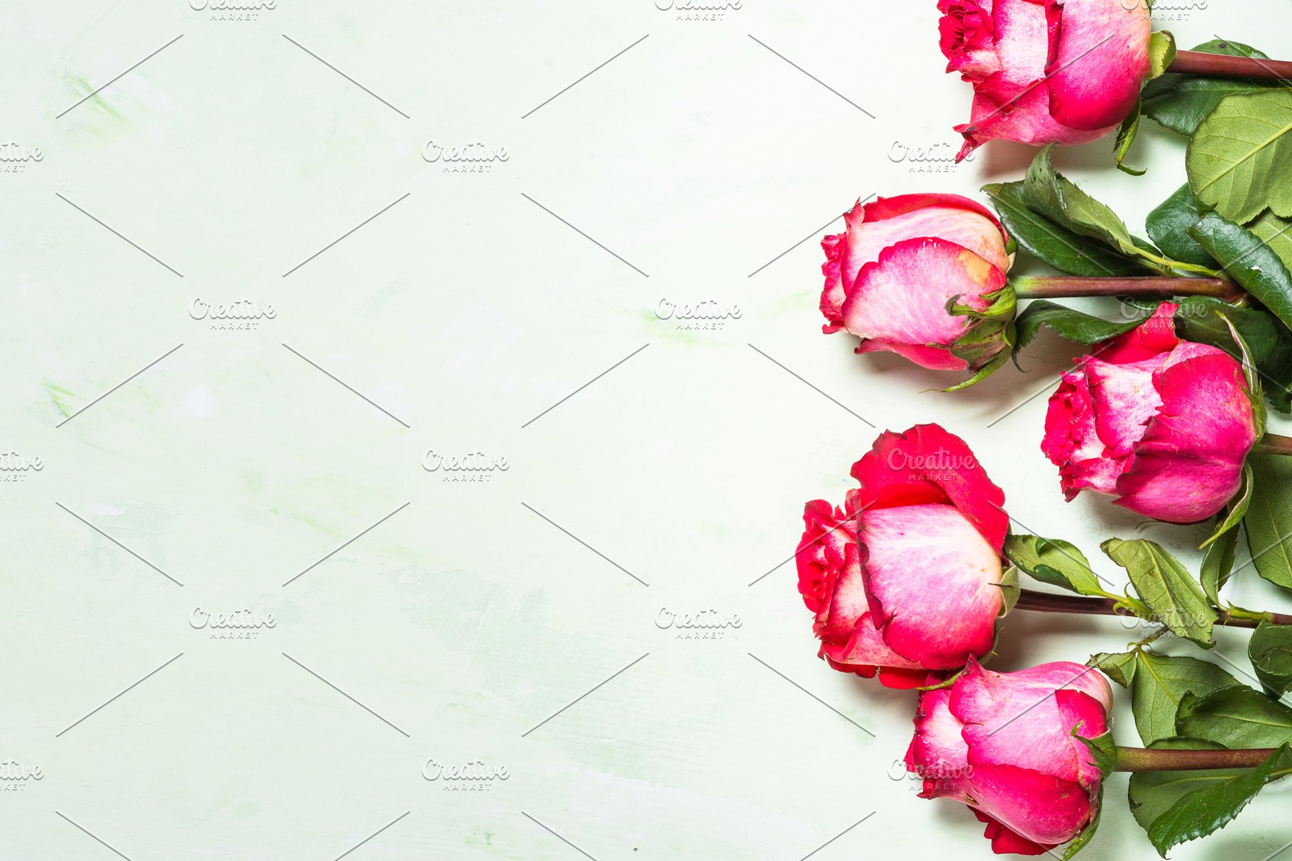 Rose Flower Background Top View High Quality Nature Stock