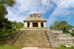 Palenque Temple Steps