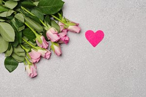 Pink roses and pink heart