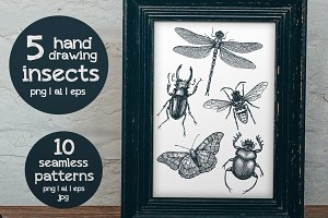 5 hand-drawn Insects & patterns