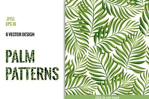 Tropical patterns. Palm leaves