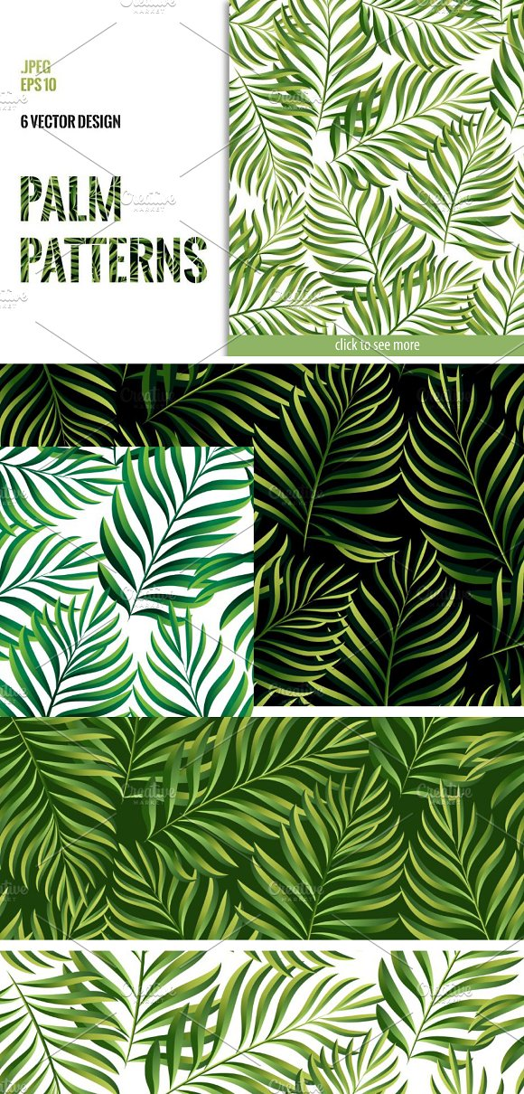 Tropical Patterns Palm Leaves