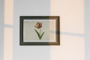 Flower photo frame hanging on wall