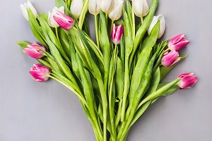 Tulips bouquet on gray