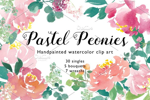 Pastel Peonies Watercolor Element
