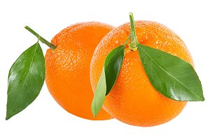 Two whole oranges with leaf isolated