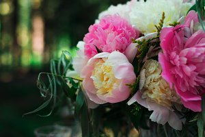 Beautiful bright bouquet of white and pink peony