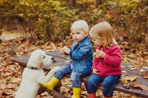 Babies and doggy in the autumn park