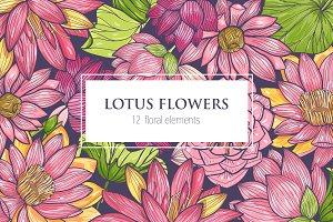 Set of lotus flowers