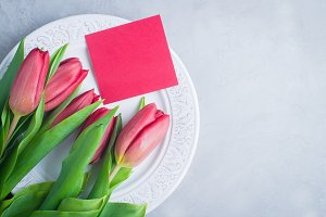 Pink Tulips. Holiday Concept