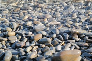 Wet stones on the sea shore