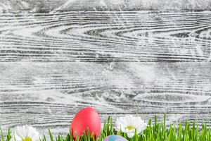 Easter background 004