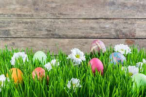 Easter Background 005