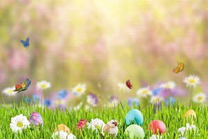 Easter Background 009