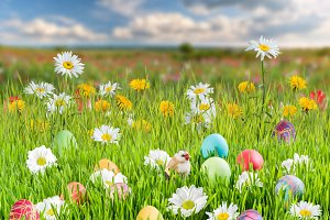 Easter Background 010