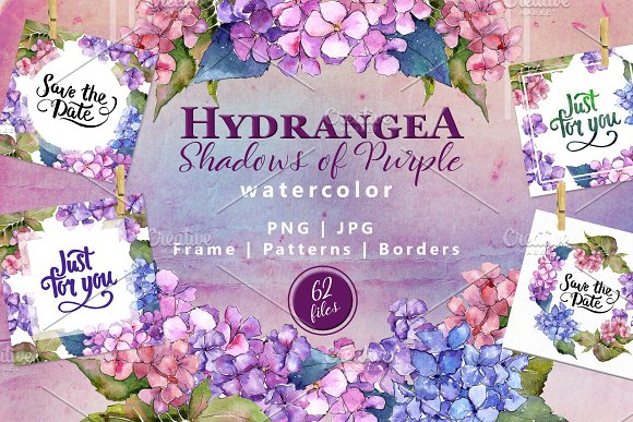 Hydrangea PNG watercolor flower set  in Illustrations