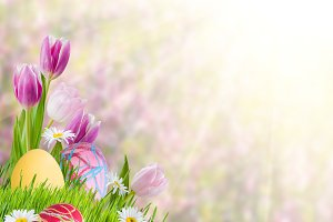 Easter Background 012