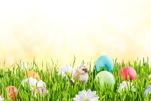 Easter Background 015