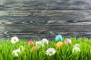 Easter background 023