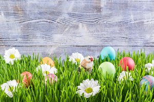 Easter background 025