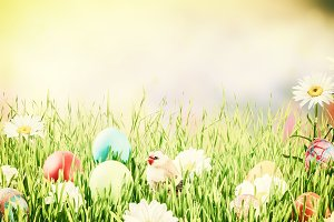 Easter background 026
