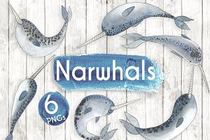 Watercolour Narwhals
