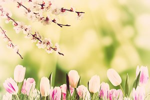 Easter background 034