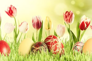 Easter background 035