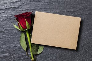Red rose with a blank card