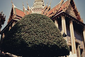 wat par kauw, Thai royal palace