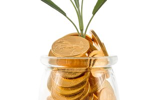 Gold coins inside glass jar to represent savings  with green shoots