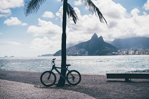 Bike tied to palm tree, Rio