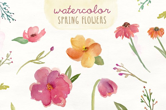 Watercolor Spring Flowers Illustrations Creative Market