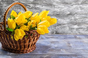 Tulips in basket