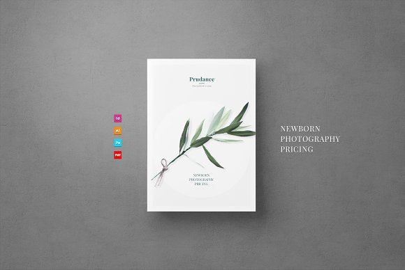 newborn pricing flyer flyer templates creative market