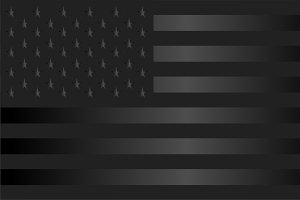 USA flag, American flag vector black