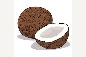 Isolate ripe coconut fruit