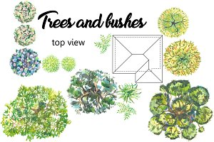 Trees and bushes. Top view.