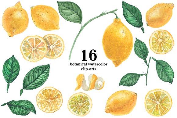 Lemon Garden Botanical Watercolor
