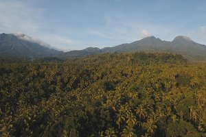 Mountains with tropical forest. Camiguin island Philippines.