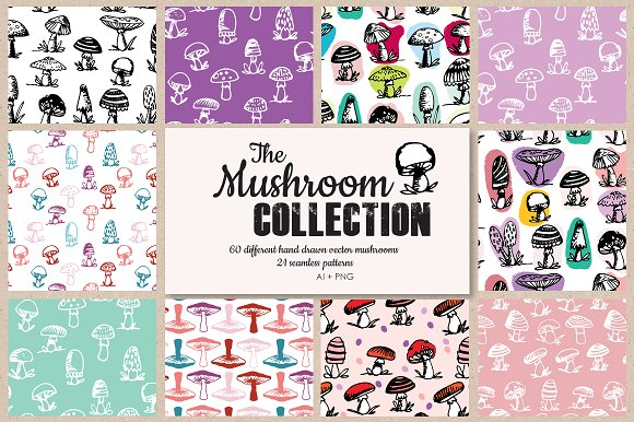 The mushroom collection