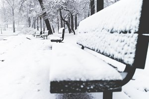 Snow Covers a Park Bench