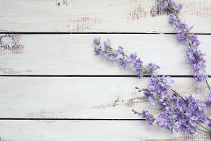 Lavender floral on wooden background