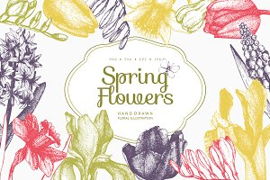 Spring Flowers Illustrations Set